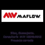 Consultoría-IATF5